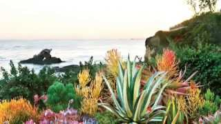 Take a Peek Into Western Garden Book of Landscaping | Sunset