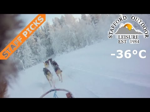 husky-dog-sledding-ride-in-lapland,-finland-with-stafford-outdoor-leisure