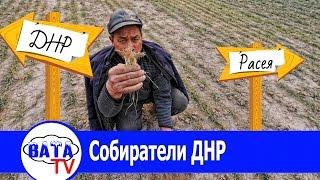 ДНР соберет Урожай. Но пока непонятно чей