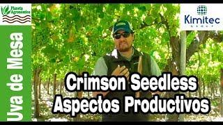Aspectos Productivos de Crimson Seedless – Video Interactivo (Activar etiquetas youtube)