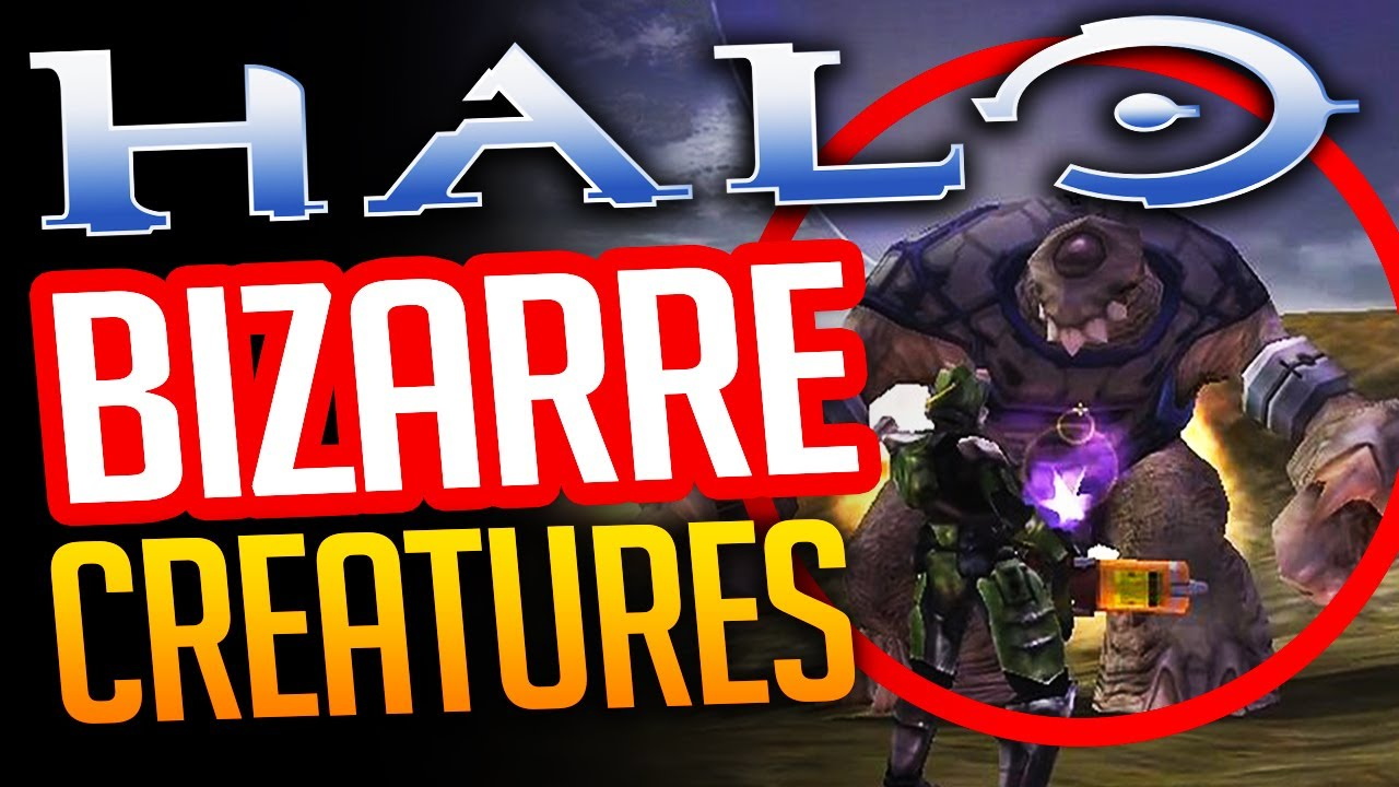 Halo 5 Bizarre Creatures You Probably Didnt Know About