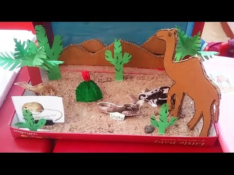 Kids School Project Ideas.Types of animals.Wild animals desert animals Domestic animals model