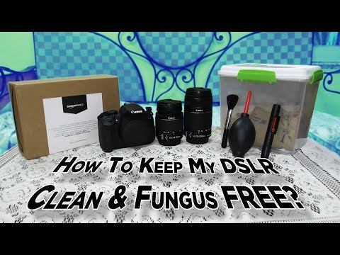How To Keep DSLR Clean And Fungus Free?   DSLR Tips   DSLR Cleaning   Dekh Review (Hindi/Urdu)