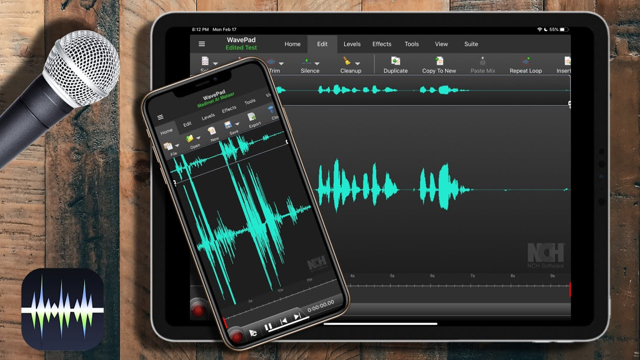 How To Remove Background Noise Or Wind Noise For Clear Voice On Iphone Ipad Wavepad Youtube