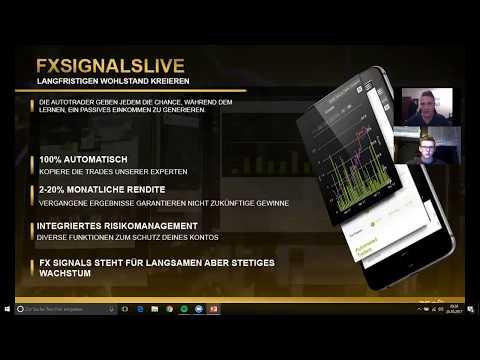 Investor am Forex Markt / Trading Strategie für Anfänger