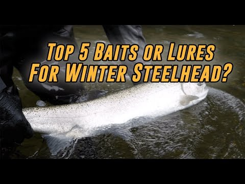 TOP 5 Baits Or Lures For Catching Winter Steelhead