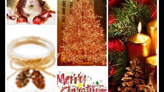 Christmas D.I.Y Thumbnail