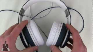 Fanny Wang DJ 3000 Series Active Noise Canceling Headphones Review