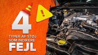 VW BEETLE vedligeholdelsestips