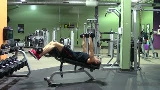 Decline Dumbbell Bench Press - Hasfit Lower Chest Exercise Demonstration - Decline Dumbbell Press