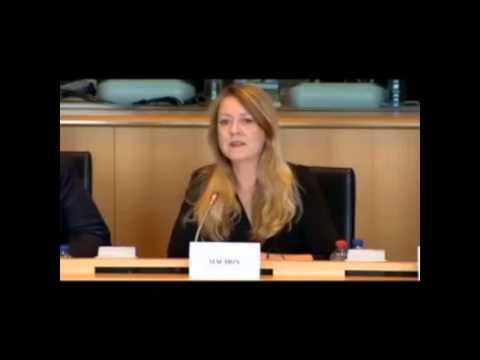 Annie Machon - European Parliament Committee - NSA Mass Surveillance of EU Citizens - Sept.30, 13