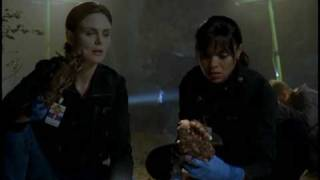 Bones - Season 4 - Trailer Deutsch German