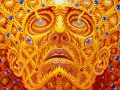 Introduction to Alex Grey and his Visionary Art