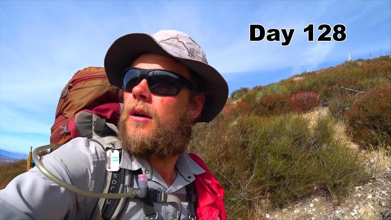 128 Pct Day Of The Poodle Dog Bush Youtube
