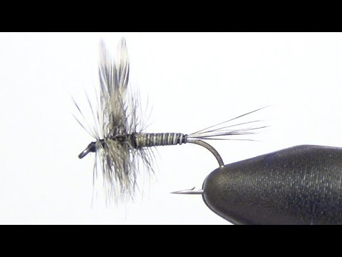 Mosquito Dry Fly Tying Instructions and How To Tie Tutorial
