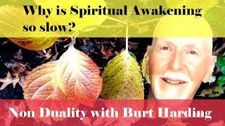 Why is spiritual awakening so slow in coming?