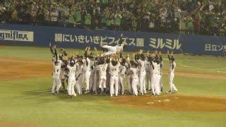 Moment of Climax Series Champion of Tokyo Yakult Swallows (東京ヤクルトスワローズ CS優勝の瞬間から胴上げへ2015年10月)