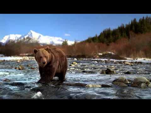 Beervis Commercial - Filmed In Slovakia