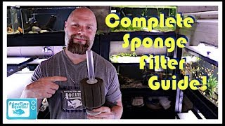 Fish Tank Sponge Filters: Everything You Need to Know! Assembly | Placement | Flow and More