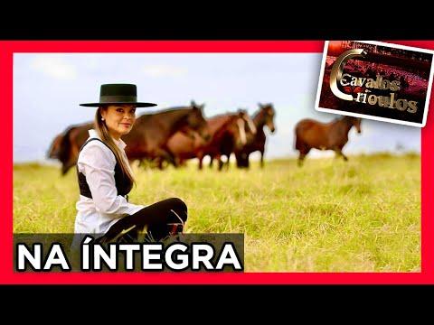 Programa CAVALOS CRIOULOS/ 04/07/2021