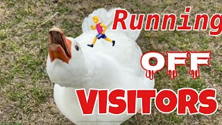 Running Off Visitors
