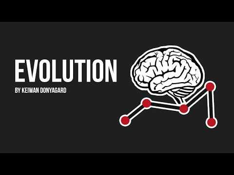 Evolution - Neural Network & Genetic Algorithm