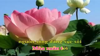 [Karaoke] Việt Nam Quê Hương Tôi HD