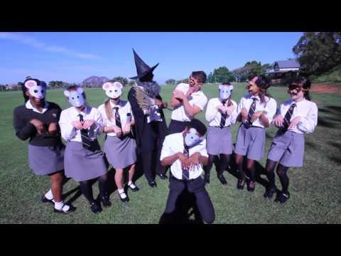 Thomas More College Matric Final Video 2016