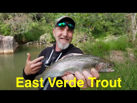 Trout Fishing the East Verde River