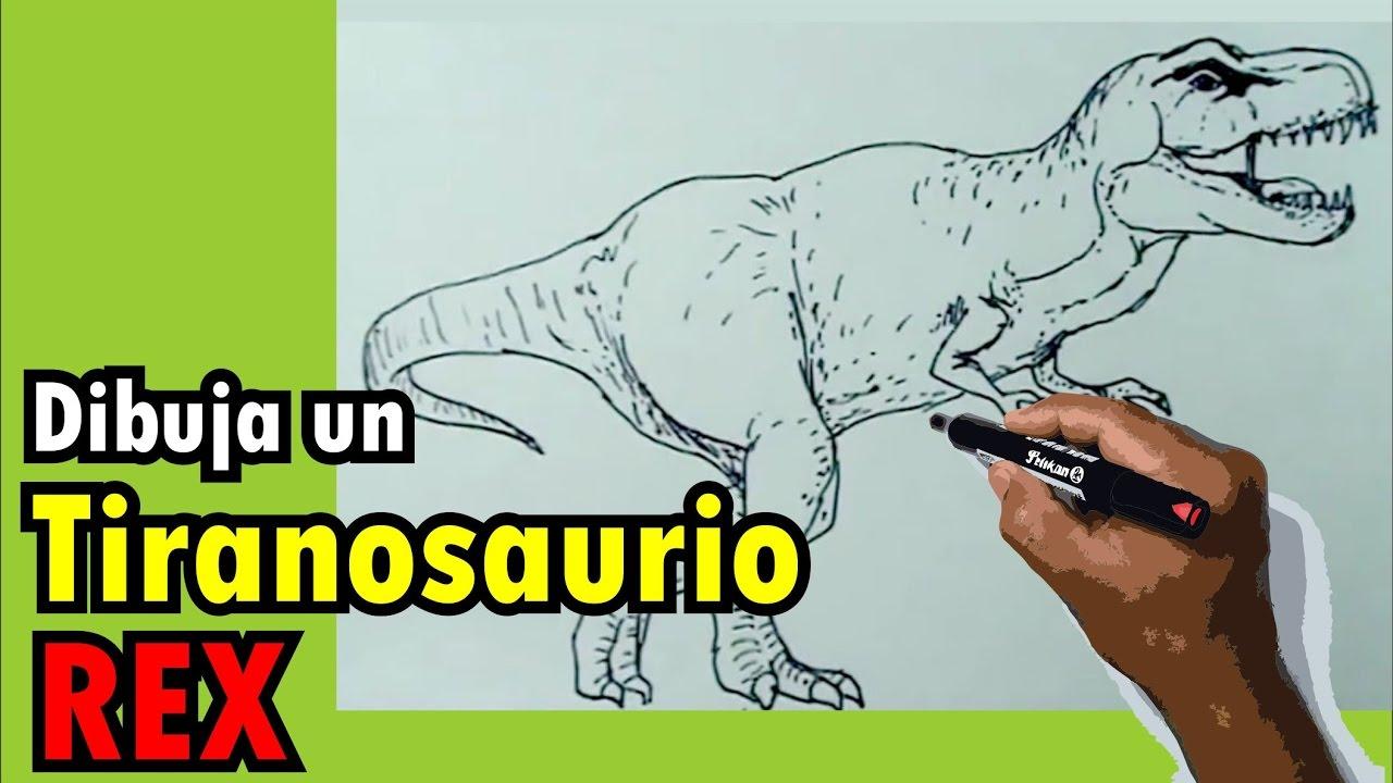 Dibujos De Dinosaurios: Dibujos De Dinosaurios Fácil 6/8