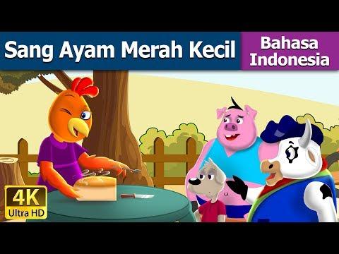 Sang Ayam Merah Kecil   Dongeng Anak   Kartun Anak   Dongeng Bahasa Indonesia