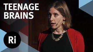 The Neuroscience of the Teenage Brain - with Sarah-Jayne Blakemore