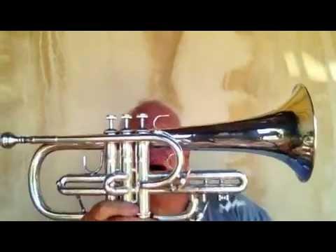 Bach Strad Sn 90775 Flugel Mdl 182 Youtube