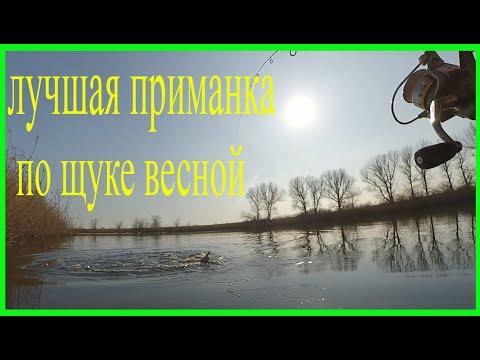 Рыбалка на хищника в марте. Воблер косит пассивную щуку. Рыбалка в Краснодарском крае.