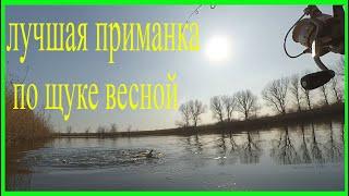 Рыбалка на хищника в марте Воблер косит пассивную щуку Рыбалка в Краснодарском крае