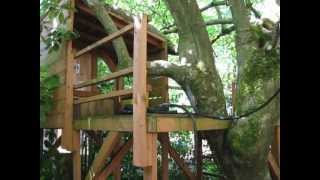 Building Our Fun Kids Tree House, Part 2