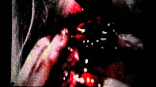 Lady Gaga - Vomit/ Eating Heart and Tatoo Interlude
