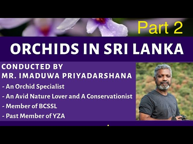 YZA Public Lecture (15th August 2020) - Part 2