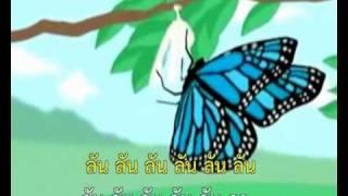 เพลงหนอนผีเสื้อ-MV-Karaoke