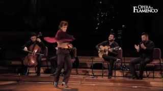 Opera y Flamenco - Toni Moñiz