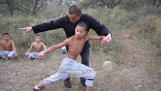 Shaolin Xinyiba - Traditional Xiao Hong Quan  Gongfa skill methods tutorial
