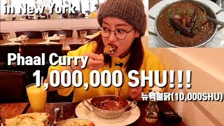 1,000,000SHU!! (Phaal Curry) Extreme Curry challenge in NY. mukbang Brick Lane Curry House