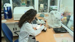 Գլուխգործոցներ՝ երևանյան լաբորատորիաներում