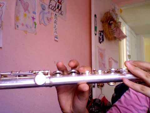 """Skip to my Lou"" played on flute"