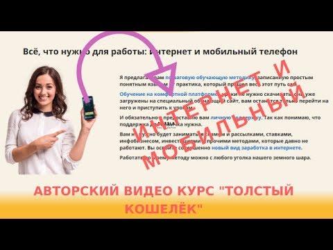 Авторский видео курс ТОЛСТЫЙ КОШЕЛЁК, заработок от 30 000 рублей в месяц, Алена Красавина