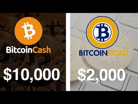 Buy Bitcoin Cash And Bitcoin Gold? - $10,000 COIN IN 2018?