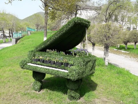 **РОЯЛЬ в кустах**Детская школа искусств- Дальнегорск