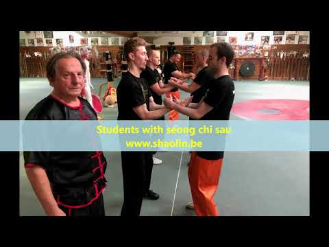 Grandmaster Walter Toch with examination students Wing Chun 06 september 2020 Belgium