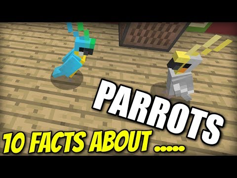 10 FACTS about PARROTS – Minecraft Xbox – PS4 / PE / PS3 / Wii U / Switch