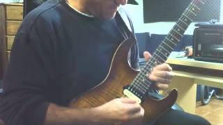 Vinnie Moore - In the Healing Garden Cover by Pedro Vallejo